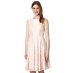 Jonathan Saunders/EDITION - Designer peach floral burnout fit and flare dress