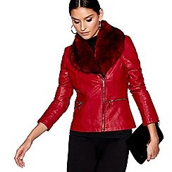 Star by Julien Macdonald - Dark red faux fur collar jacket