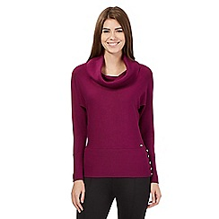 Star by Julien Macdonald - Purple cowl neck jumper