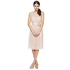 Debut - Celine Mesh Bodice Midi Dress with Corsage