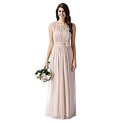 Debut - Pale pink mesh corsage maxi dress