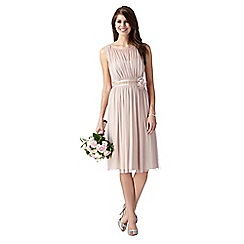 Debut - Rose pink corsage detail dress