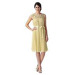 No. 1 Jenny Packham - Yellow 'Sienna' hand-embellished pleated dress