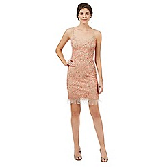 Butterfly by Matthew Williamson - Nude 'Rosa' embellished fringed dress