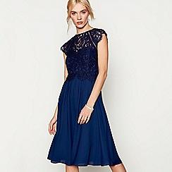 Debut - Navy chiffon lace 'Olivia' high neck plus size midi bridesmaid dress