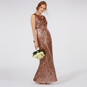 No. 1 Jenny Packham Tan 'carrie' Sequin Embellished Evening Dress