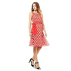 The Collection Petite - Petite coral circle print dress