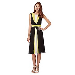 The Collection Petite - Petite lime colour block panel dress