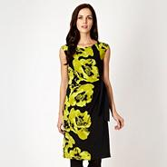 Petite lime poppy jersey dress