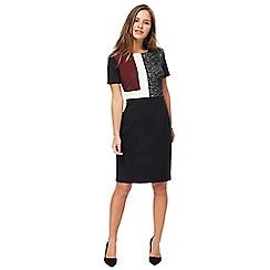 The Collection Petite - Black colour block knee length petite pencil dress