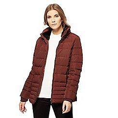 Maine New England - Brown feather and down padded funnel neck coat