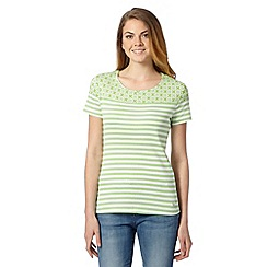 Maine New England - Bright green circle striped top