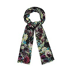 Star by Julien MacDonald - Designer black leopard floral scarf