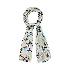 Red Herring - White butterfly print scarf