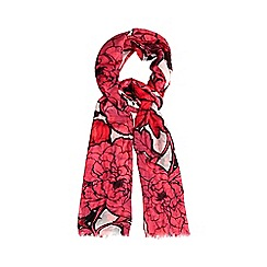 The Collection - Pink outlined roses scarf