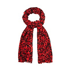 Star by Julien Macdonald - Red leopard print scarf