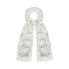 Nine by Savannah Miller - Cream hummingbird print scarf