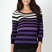 Petite purple multi striped jumper