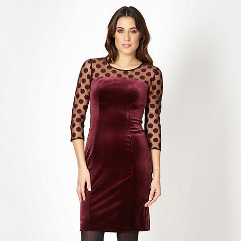 The Collection - Dark purple spotted velvet dress