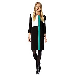 The Collection - Black crepe colour block dress