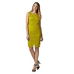 The Collection - Lime lace overlay shift dress