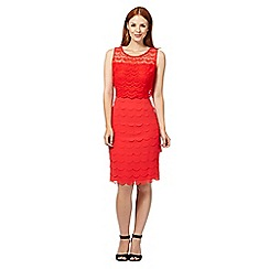 The Collection - Coral lace layered scalloped shift dress