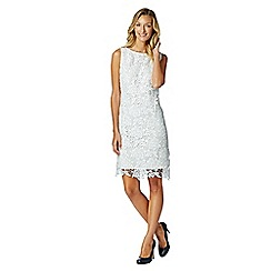 The Collection - Ivory floral lace mesh dress