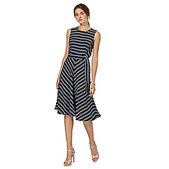 The Collection - Navy striped knee length skater dress