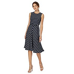 The Collection - Navy striped plus size skater dress