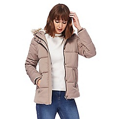 The Collection - Natural padded jacket