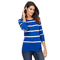 The Collection - Blue striped zip detail jumper