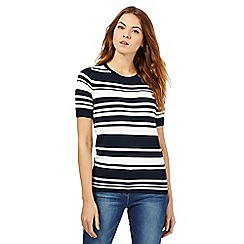 The Collection - Navy striped jumper