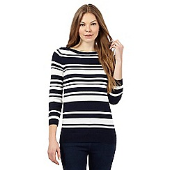 The Collection - Navy striped print jumper