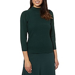 Principles by Ben de Lisi - Designer dark green chevron turtle neck jumper