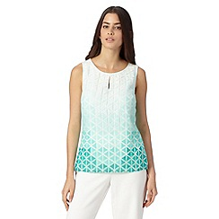 Principles Petite by Ben de Lisi - Petite designer pale green ombre burnout shell top