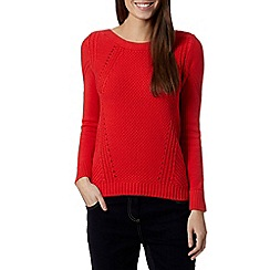 Principles Petite by Ben de Lisi - Petite designer bright red chunky knit jumper