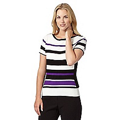 Principles Petite by Ben de Lisi - Designer purple striped jumper