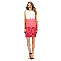 Principles Petite by Ben de Lisi - Pink star embroidered ombre-effect dress