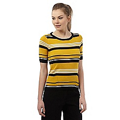 Principles by Ben de Lisi - Dark yellow striped jumper