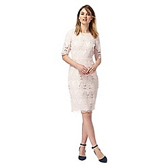 Principles by Ben de Lisi - Light pink mesh lace shift dress