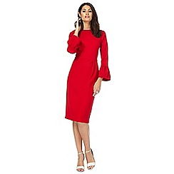 Principles by Ben de Lisi - Red round neck half length sleeve knee length pencil dress