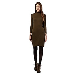 Red Herring - Khaki ribbed turtle neck dress