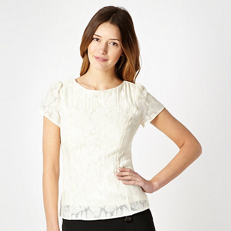 Principles Petite by Ben de Lisi - Petite cream burnout organza shell top