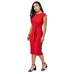 Principles Petite by Ben de Lisi - Red jersey petite dress