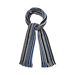 RJR.John Rocha - Blue vertical striped scarf