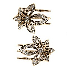 The Collection - Pack of two gold flower salon clips