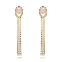 The Collection - Gold plated long stone tassel earrings