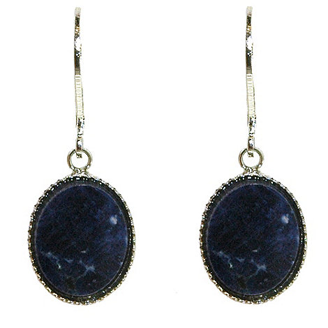 1928 - Silver sodalite drop oval earrings