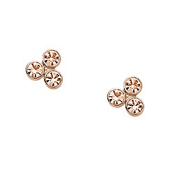 Fossil - Fossil rose studs