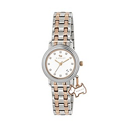 Radley - Ladies stainless steel and rose gold bracelet watch